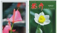《花卉》园林专刊,省级,知网、万方、维普收录,3000字符